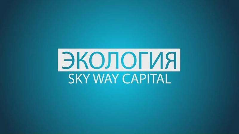 SkyWay   Экология