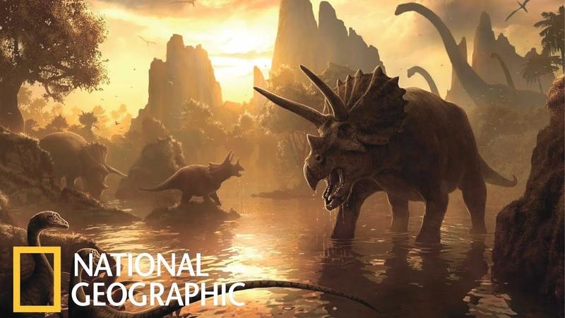 Документальный фильм динозавры начало времён l Документальный Фильм National Geographic 2020