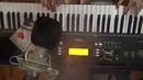 Жэтэм Серж Генсбур В Моём исполнении на синтезаторе Ямаха.