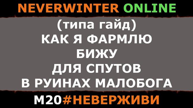 (типа гайд) ФАРМ БИЖИ ДЛЯ СУТОВ | Neverwinter м20 увлекательный геймплей неверживи