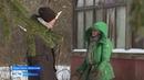 В вымершей ярославской деревне уже 15 лет живет женщина-отшельница