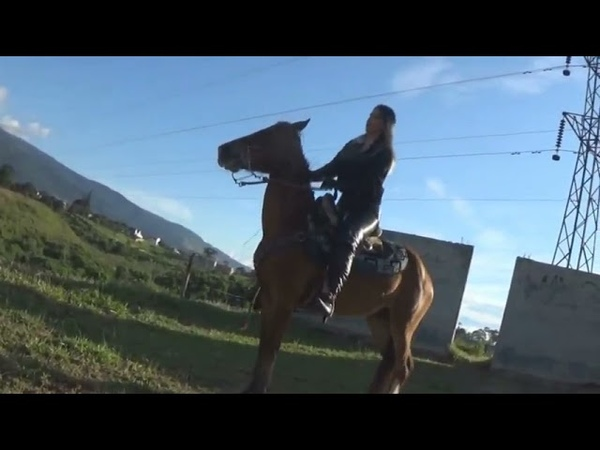 Alondra Recoleo Practice Preview PONYBOY
