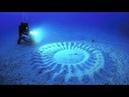 20 лет ученые не могли понять, откуда на дне моря берутся эти узоры. Правда оказалась неожиданной!..