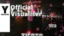 Tiesto - The Business Velon Remix Visualizer You and Records