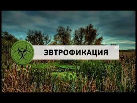 Последствия остановки течения р.Нижний Сузун (часть фильма)