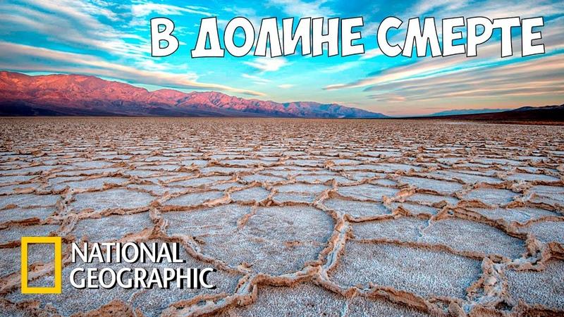В мире дикой природы Национальный парк Долина смерти