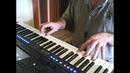 Schwarzbraun ist die Haselnuss вариант с моим голосом Yamaha psr sx700