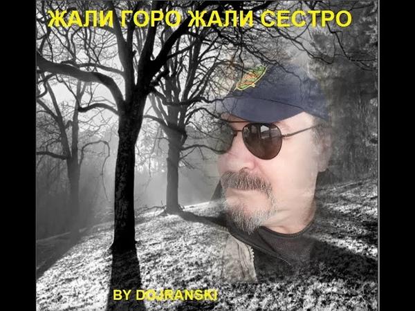 ZALI GORO VANCO DOJRANLIEV