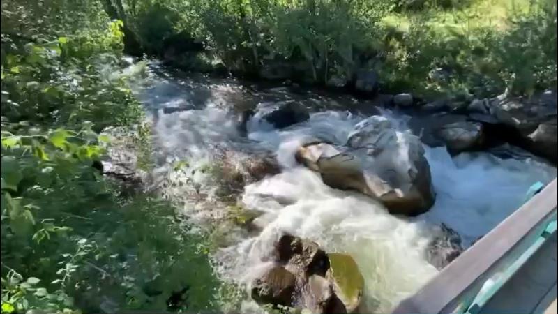 Видео от Алексея Малахова