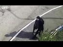 Видео с напавшим на школу в Казани