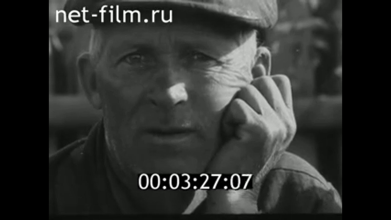 1971г. совхоз Брасовский. Брасовский район Брянская обл