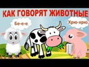 Как говорят животные. Развивающее видео для детей. Карточки Домана.