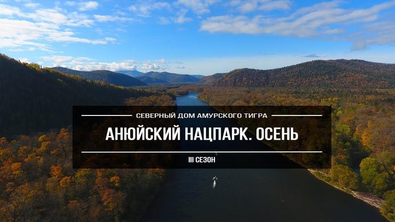 «Анюйский национальный парк. Осень» | Северный ареал обитания амурского тигра